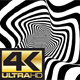 Ultra HD Zebra Waved Looped Backgrounds - VideoHive Item for Sale