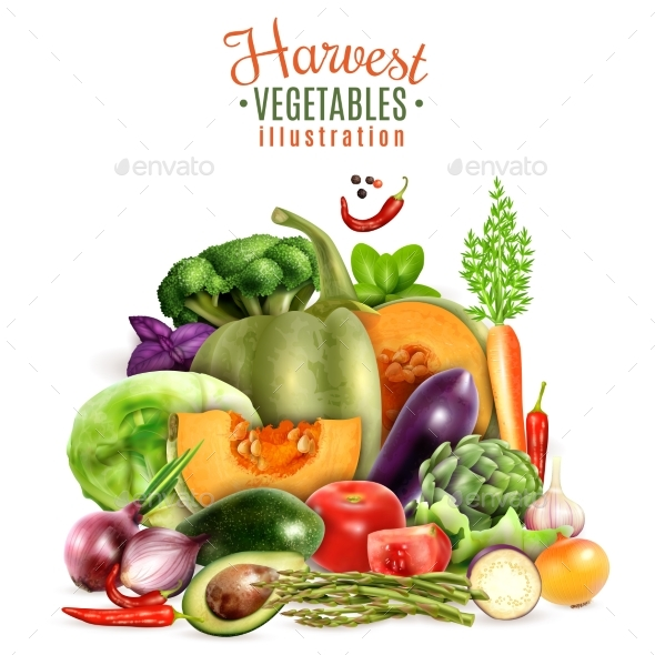 Harvest of Vegetables Illustration - Food Objects