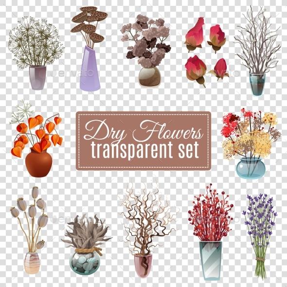 Dry Flowers Transparent Set - Flowers & Plants Nature
