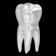 Teeth 3d Render Set - GraphicRiver Item for Sale