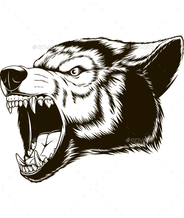 The Head of a Ferocious Wolf - Animals Characters