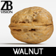 Walnut 001 - 3DOcean Item for Sale
