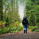 Man With Backpack Walks On Forest Path - VideoHive Item for Sale