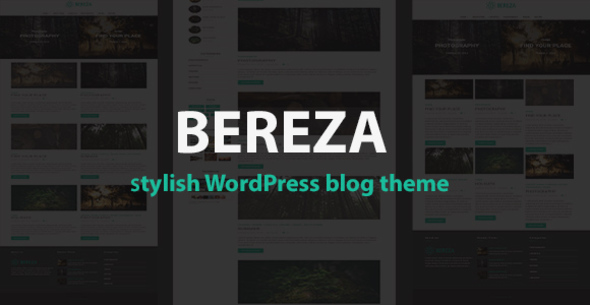 Bereza – Responsive Blog WordPress Theme