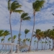 Island Beach Resort Between Palm Trees - VideoHive Item for Sale