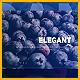 Elegant Flow Slides - VideoHive Item for Sale