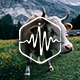 Cows with Cowbells on Alpine Meadow - AudioJungle Item for Sale