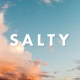 Salty - Responsive WordPress Blog Theme - ThemeForest Item for Sale