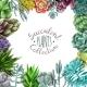 Succulent Plants Collection - GraphicRiver Item for Sale