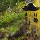 Wind Chimes Swaying in the Wind at Autumn Garden