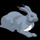 Gray Bunny Lying - VideoHive Item for Sale
