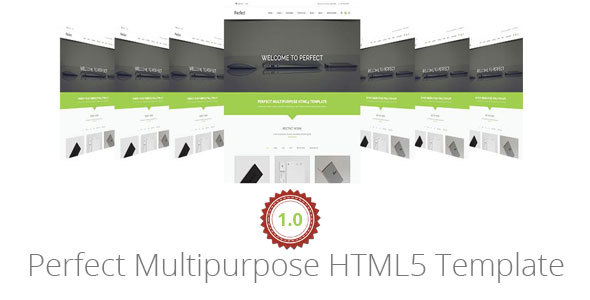 Perfect Multipurpose HTML5 Template