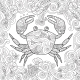 Coloring Page. Ornate Crab Isolated on White