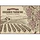 Grapes Organic Farming Landscape - GraphicRiver Item for Sale