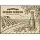 Olive Organic Farming Landscape - GraphicRiver Item for Sale