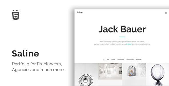 Saline – Portfolio for Freelancers