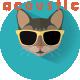 Upbeat Acoustic