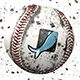 Baseball Logo Reveals - VideoHive Item for Sale