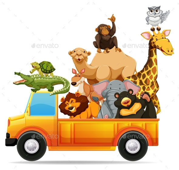 Wild Animals on Pick Up Truck - Animals Characters