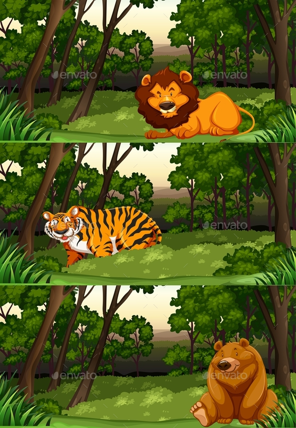 Wild Animals in the Jungle - Animals Characters