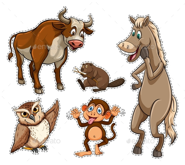 Different Types of Wild Animals - Animals Characters
