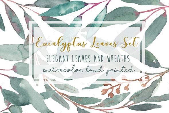 Elegant Watercolor Eucalyptus Leaves clip art hand made - Illustrations Graphics