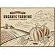 Pumpkin Organic Farming Landscape - GraphicRiver Item for Sale