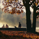 People And Dogs On Dramatic Misty Morning - VideoHive Item for Sale
