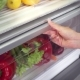 Vegetables in Fridge - VideoHive Item for Sale