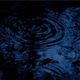 Raindrops On Forest Pool In The Dark - VideoHive Item for Sale