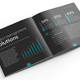 Software and Solutions Brochure - GraphicRiver Item for Sale