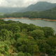 Flyover Tropical Forest and Lake Resevoir