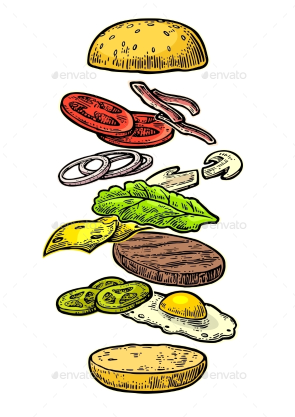 Burger Ingredients on White Background - Food Objects