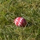 Decorated Pink Egg on Grass