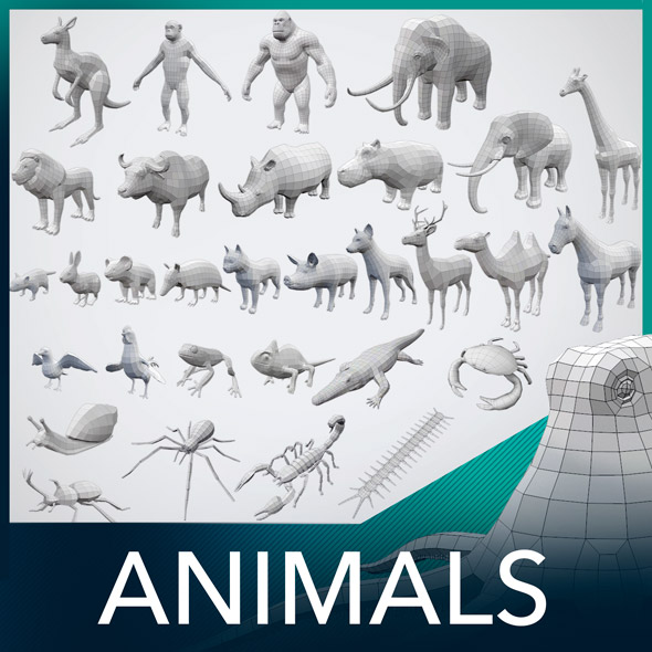 32 Animals Base Meshes - 3DOcean Item for Sale