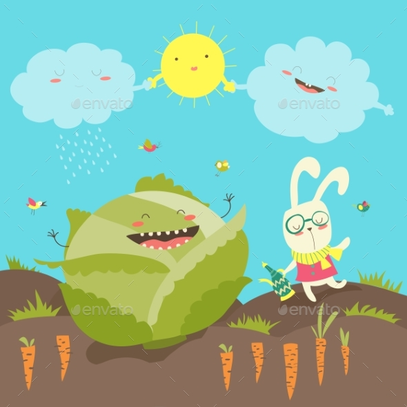 Little Rabbit and Cabbage Field - Animals Characters