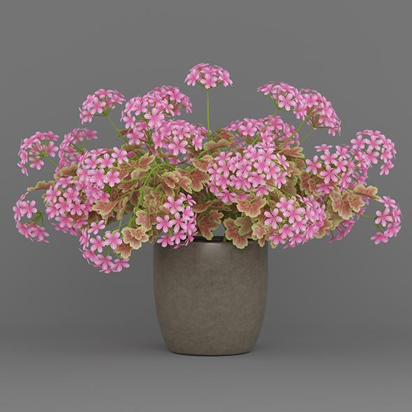 Potted Flower Plant - 3DOcean Item for Sale