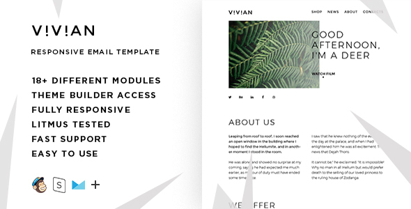 Vivian – Responsive Multipurpose Email Template + Stampready Builder