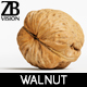 Walnut 005 - 3DOcean Item for Sale