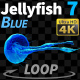 Jellyfish Blue 7 - VideoHive Item for Sale