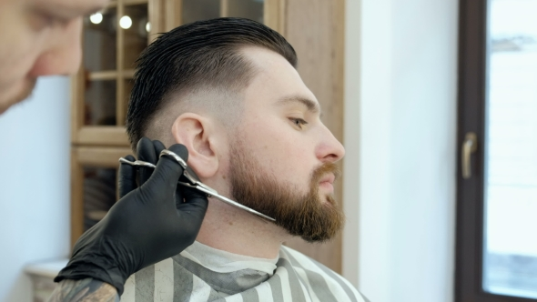 VideoHive Master Cuts Hair and Beard in the Barber Shop Cut a Beard with Scissors 19620205