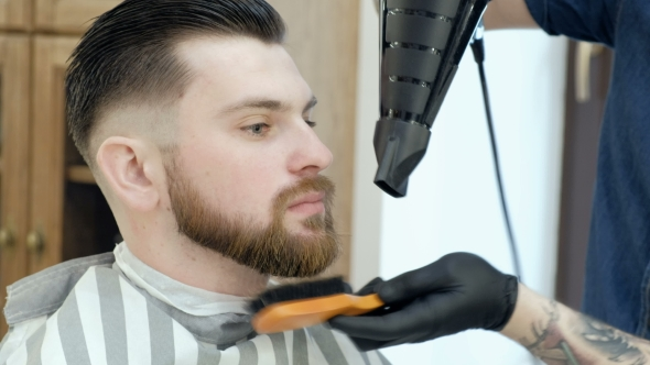 VideoHive Brutal Bearded Customer Getting His Beard Cut By a Young Hairdresser 19620278