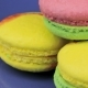 Pink, Yellow and Green Macaroon on the Blue Plate