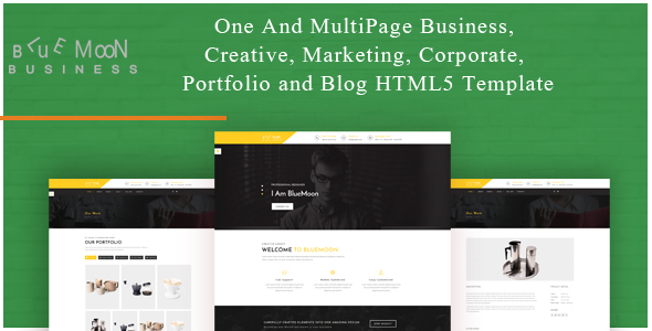 BlueMoon – One and Multipage Creative , Business , Corporate Agency and Portfolio HTML5 Template