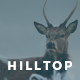 Hilltop - PSD Template for Creative Professionals - ThemeForest Item for Sale