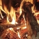 Flame of the Burning Birch Wood in a Furnace - VideoHive Item for Sale