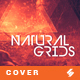 Natural Grids - Music Cover Image Artwork Template - GraphicRiver Item for Sale