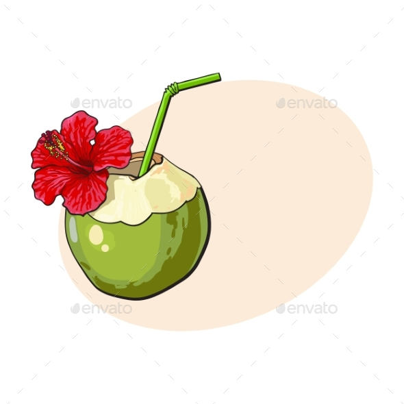 Coconut Cocktail - Food Objects