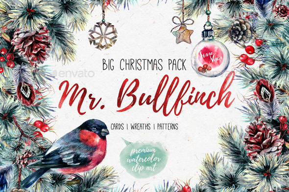 Mr.Bullfinch Watercolor Christmas Set - Graphics