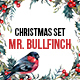 Mr.Bullfinch Watercolor Christmas Set - GraphicRiver Item for Sale